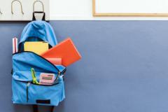 МОН пропонує завершити навчальний рік дистанційно