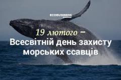19 лютого – Міжнародний день захисту морських ссавців