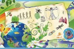 Методичні рекомендації щодо викладання предметів природничого циклу   у 2021-2022 н.р.