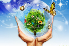 Веб-конференція «Практична складова курсу «Природознавство» у 5 класах»